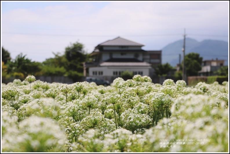 吉安九月雪-2020-09-35.jpg