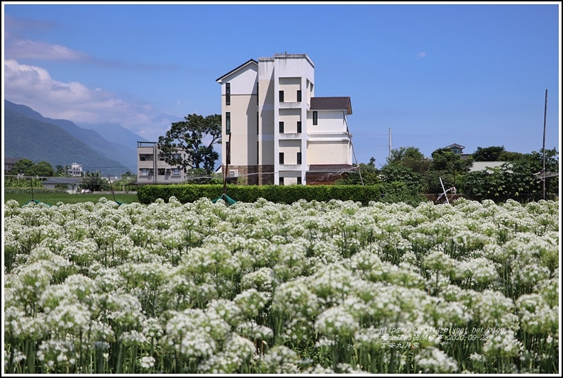 吉安九月雪-2020-09-34.jpg