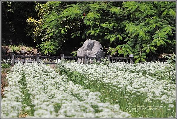 吉安九月雪-2020-09-17.jpg