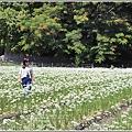 吉安九月雪-2020-09-06.jpg