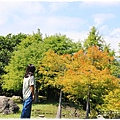 松湖驛站-2020-09-25.jpg