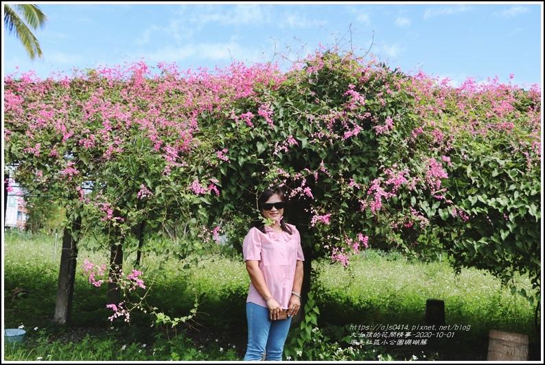 瑞美社區小公園珊瑚藤-2020-10-19.jpg