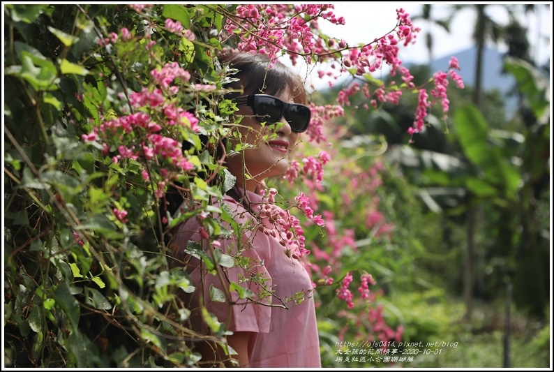 瑞美社區小公園珊瑚藤-2020-10-18.jpg