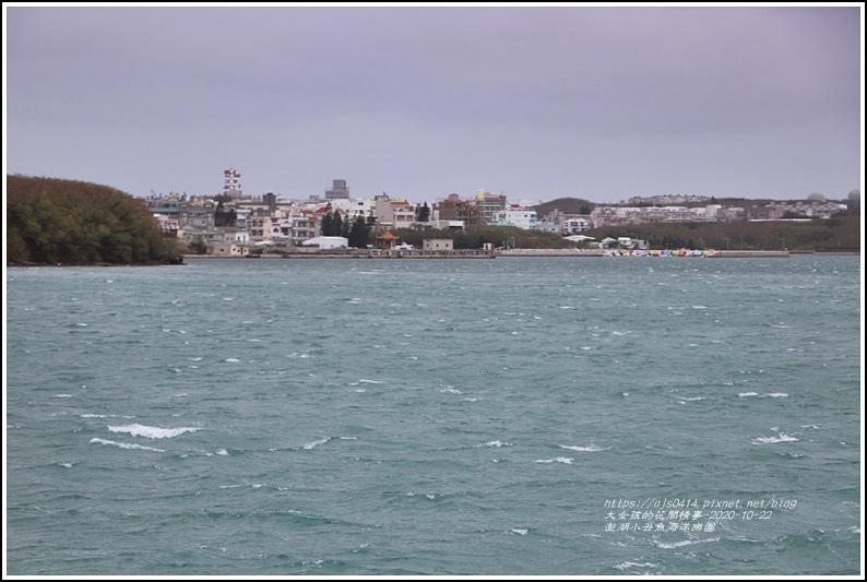 澎湖小丑魚海洋樂園-2020-10-14.jpg