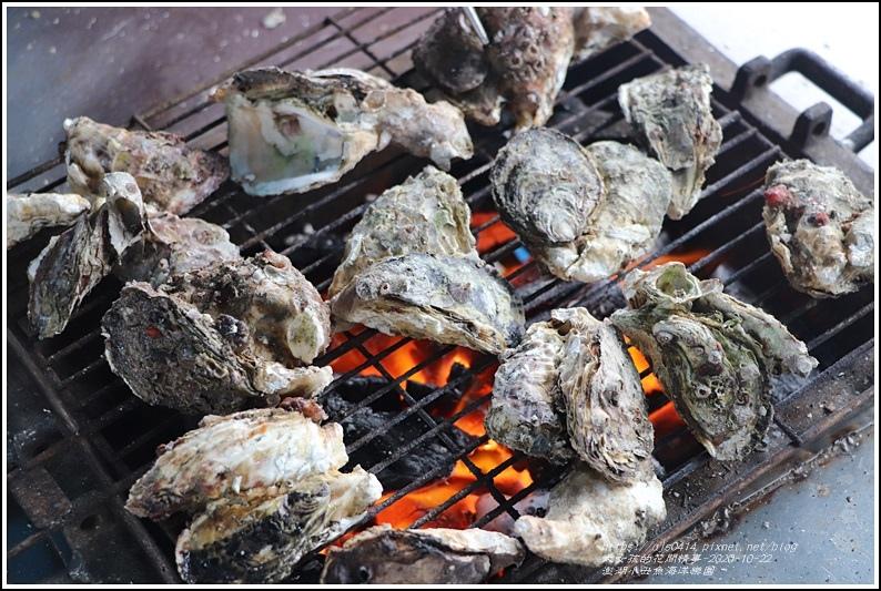 澎湖小丑魚海洋樂園-2020-10-11.jpg