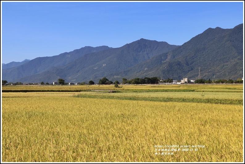 池上萬安社區-2020-11-08.jpg