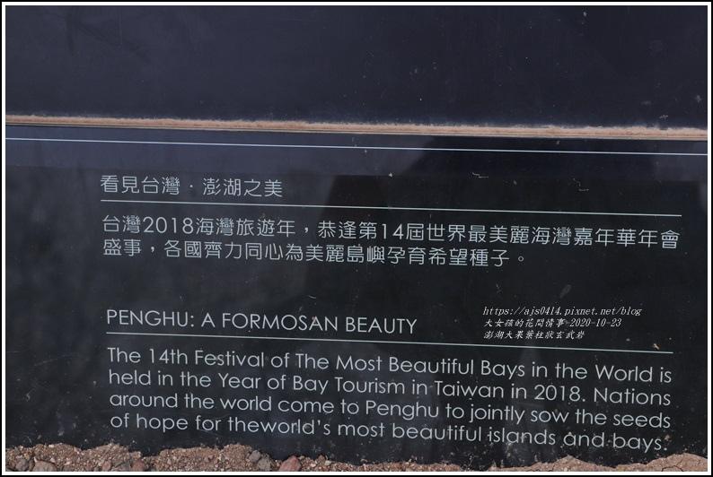 澎湖大果葉柱狀玄武岩-2020-10-32.jpg