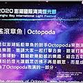 澎湖國際海灣燈光節-2020-10-68.jpg