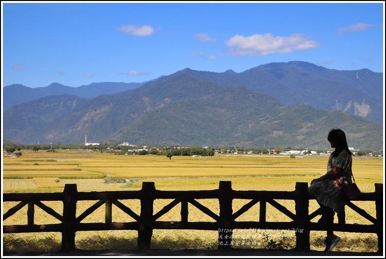 池上黃金稻田-2020-10-47.jpg