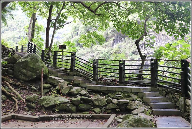 燕子口步道(太魯閣國家公園)-2020-11-68.jpg