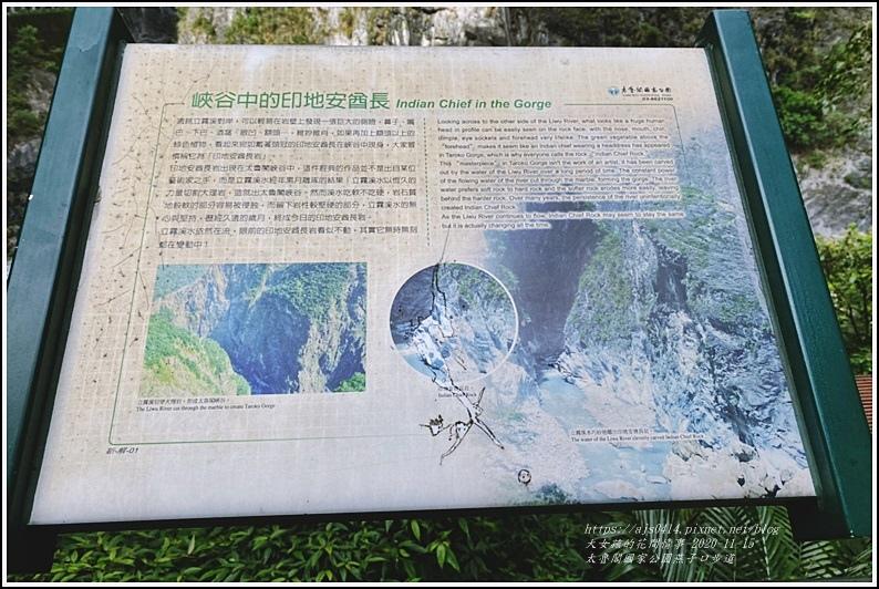 燕子口步道(太魯閣國家公園)-2020-11-56.jpg