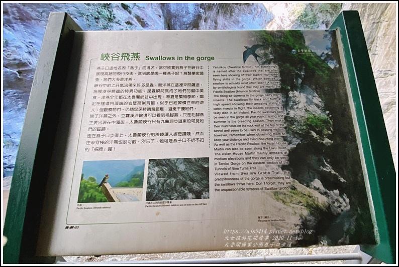 燕子口步道(太魯閣國家公園)-2020-11-25.jpg