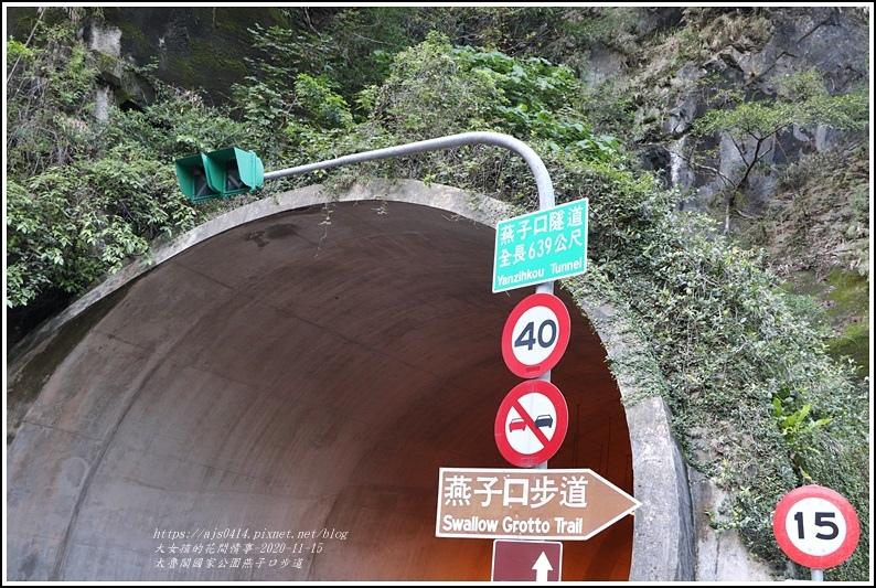 燕子口步道(太魯閣國家公園)-2020-11-07.jpg