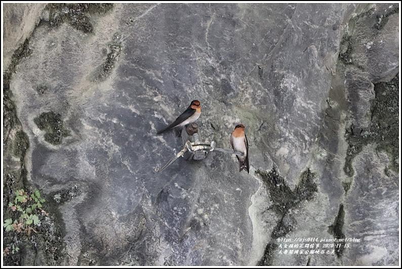 太魯閣國家公園峽谷之美-2020-11-07.jpg
