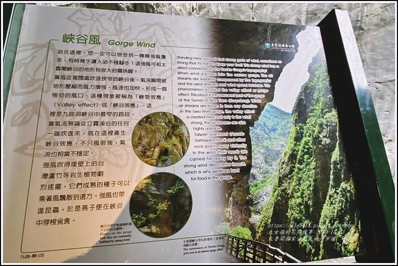 太魯閣國家公園九曲洞步道-2020-11-67.jpg
