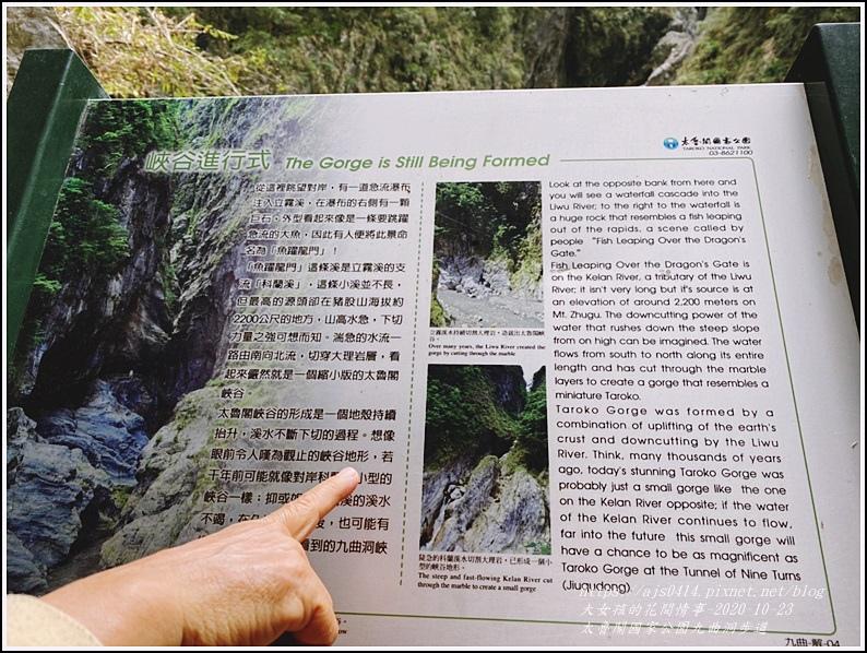 太魯閣國家公園九曲洞步道-2020-11-62.jpg