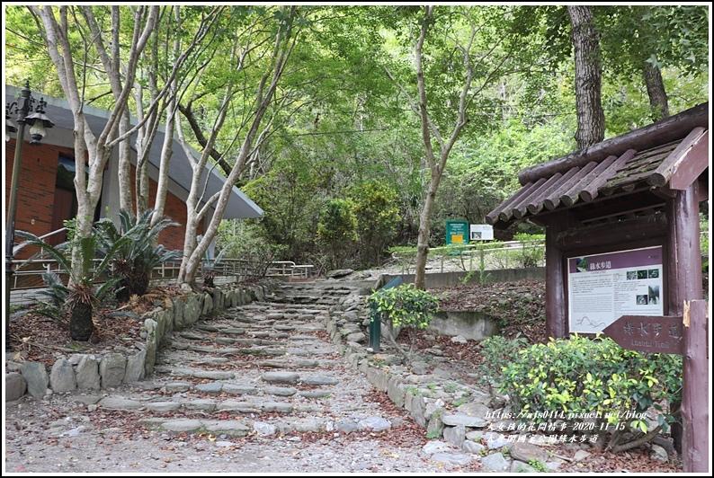 太魯閣國家公園綠水步道-2020-11-03.jpg