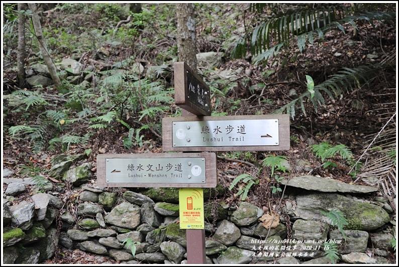 太魯閣國家公園綠水步道-2020-11-09.jpg