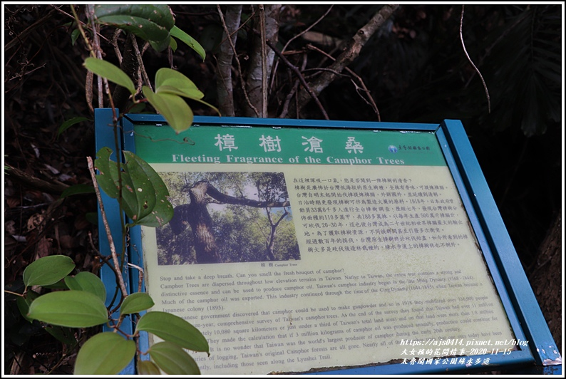 太魯閣國家公園綠水步道-2020-11-13.jpg