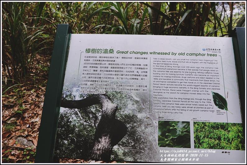 太魯閣國家公園綠水步道-2020-11-34.jpg