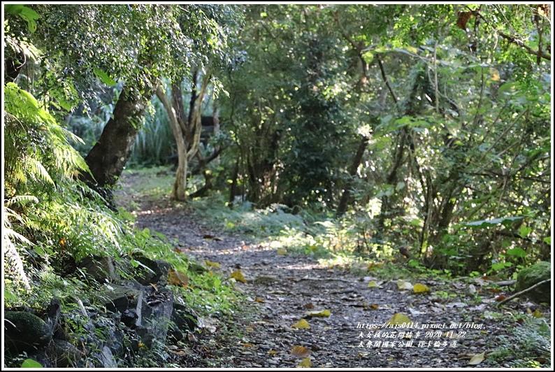 太魯閣國家公園得卡倫步道-2020-11-13.jpg