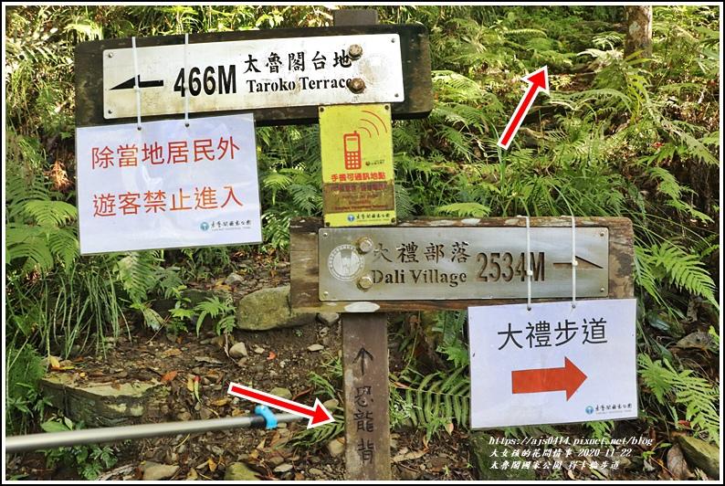 太魯閣國家公園得卡倫步道-2020-11-18.jpg