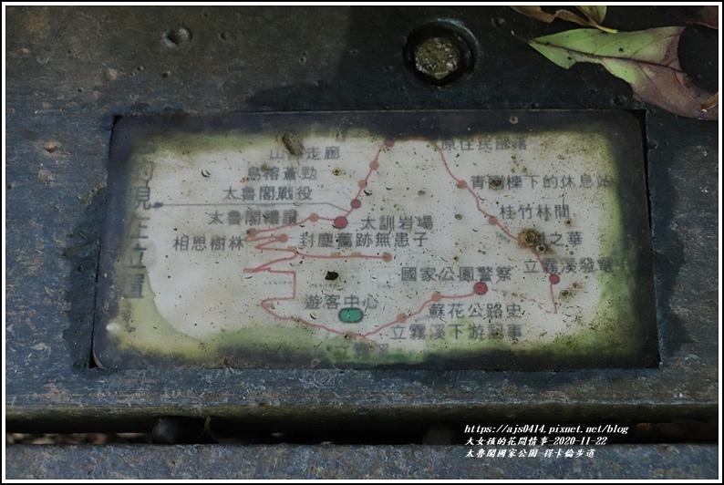 太魯閣國家公園得卡倫步道-2020-11-55.jpg