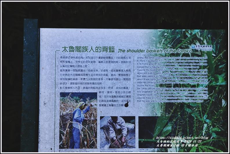 太魯閣國家公園得卡倫步道-2020-11-56.jpg