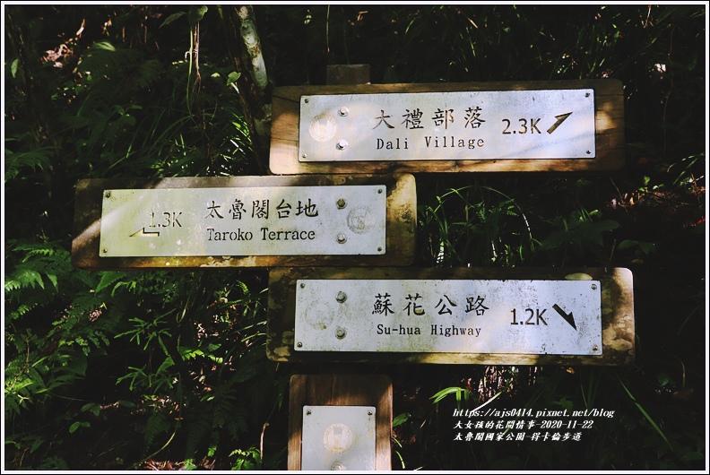 太魯閣國家公園得卡倫步道-2020-11-90.jpg