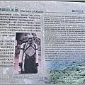大禮步道(大禮部落)-2020-11-56.jpg