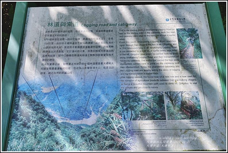 大禮步道(大禮部落)-2020-11-31.jpg