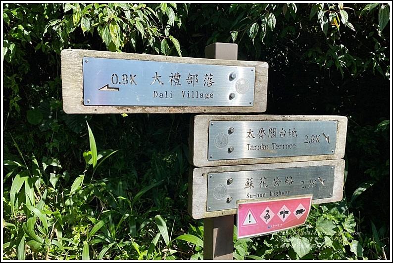 大禮步道(大禮部落)-2020-11-30.jpg
