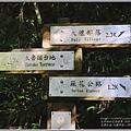 大禮步道(大禮部落)-2020-11-01.jpg