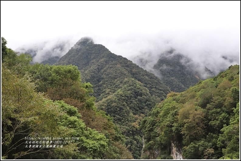 太魯閣國家公園錐麓古道-2020-12-53.jpg