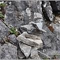 太魯閣國家公園錐麓古道-2020-12-206.jpg