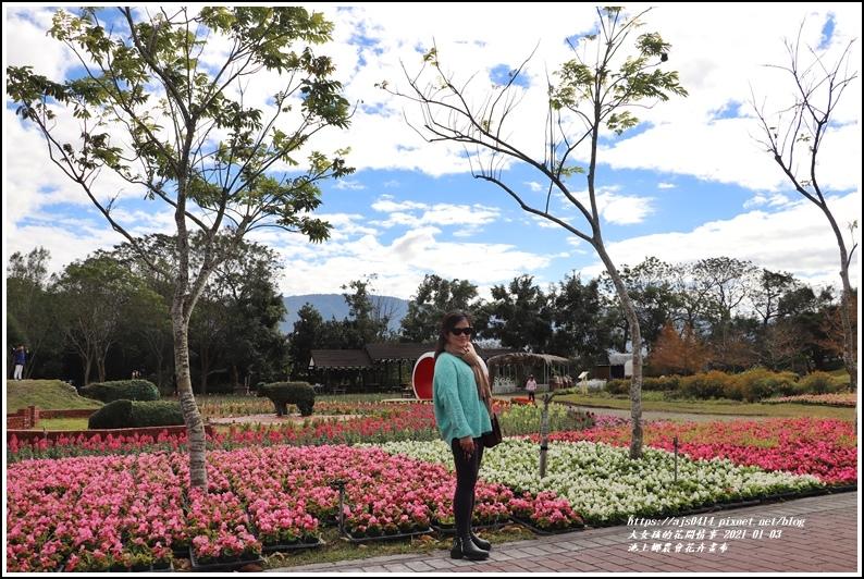池上鄉農會花卉畫布-2021-01-08.jpg