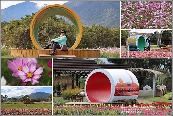池上鄉農會花卉畫布-2021-01-10.jpg