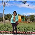 池上鄉農會花卉畫布-2021-01-07.jpg