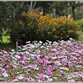 池上鄉農會花卉畫布-2021-01-20.jpg