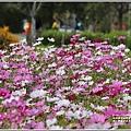 池上鄉農會花卉畫布-2021-01-21.jpg
