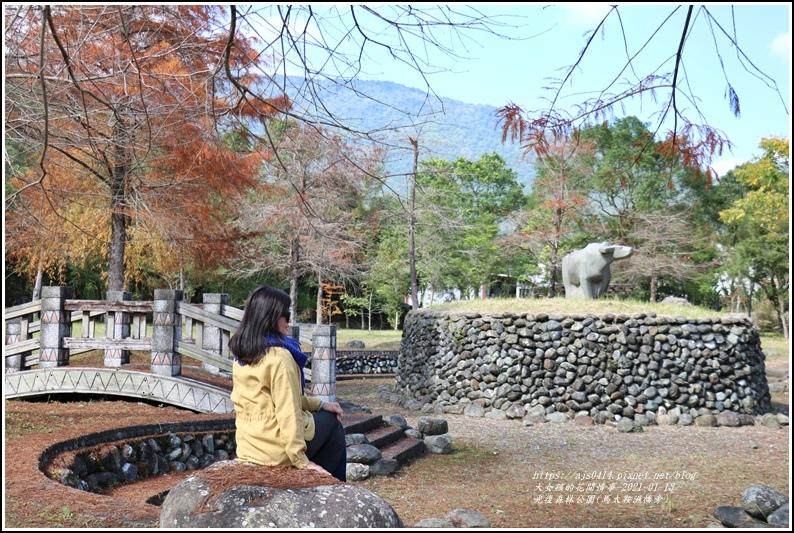 光復森林公園(落羽松)-2021-01-33.jpg