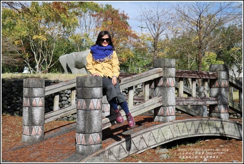 光復森林公園(落羽松)-2021-01-26.jpg