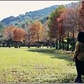 光復森林公園(落羽松)-2021-01-28.jpg