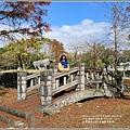 光復森林公園(落羽松)-2021-01-24.jpg