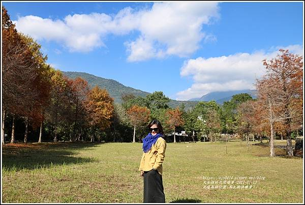 光復森林公園(落羽松)-2021-01-23.jpg