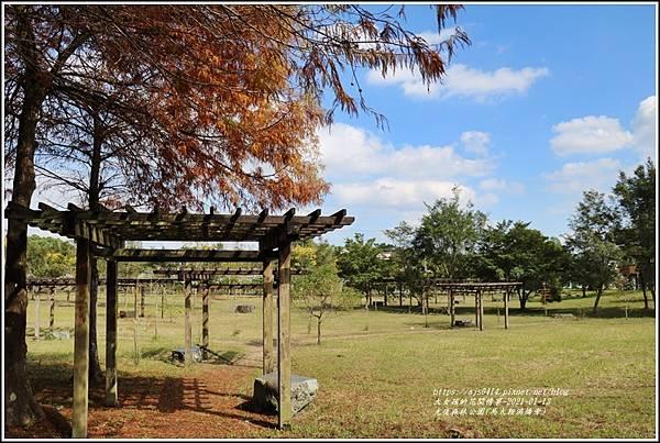光復森林公園(落羽松)-2021-01-12.jpg