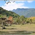 光復森林公園(落羽松)-2021-01-16.jpg