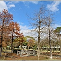 光復森林公園(落羽松)-2021-01-07.jpg