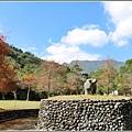 光復森林公園(落羽松)-2021-01-06.jpg