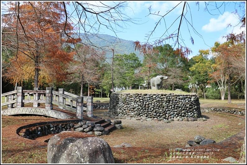 光復森林公園(落羽松)-2021-01-04.jpg
